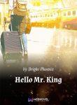 Hello-Mr.-King