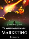 transdimensional-marketing
