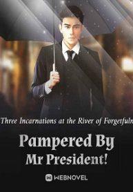 pampered-by-mr-president