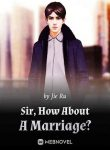 sir-how-about-a-marriage